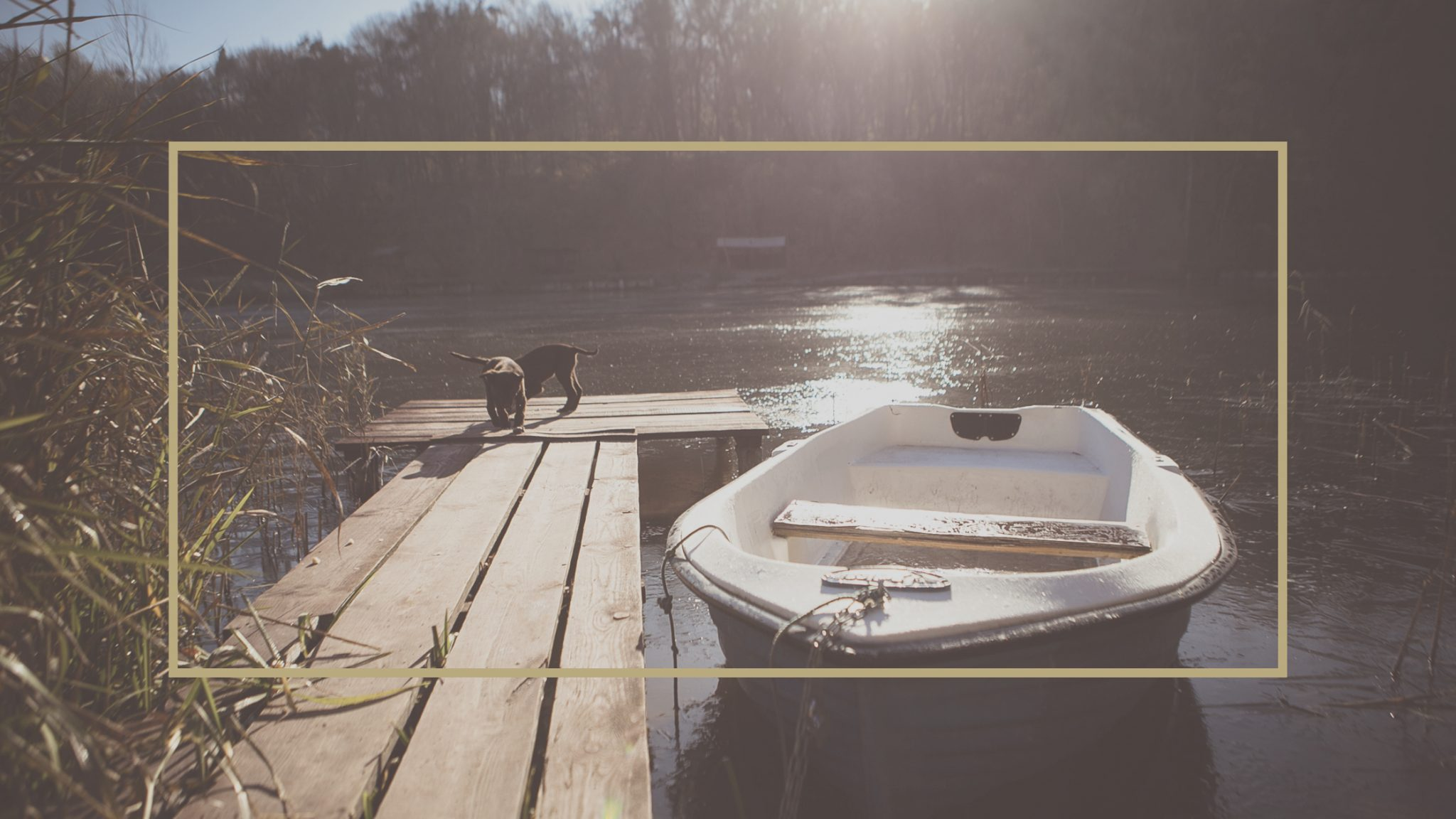 Association du lac chapleau choses savoir avant de - Choses a savoir avant de peindre une piece ...